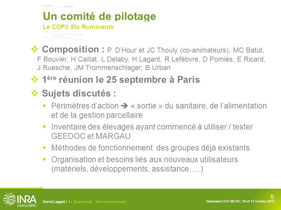 5 Hervé Lagant / S.I. Ruminants : état davancement Séminaire CATI SICPA : 16 et 17 octobre 2013 Un comité de pilotage Le COPil SIs Ruminants Compositi