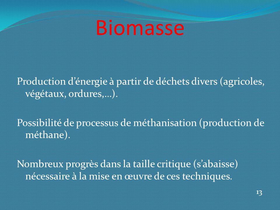 Biomasse Production dénergie à partir de déchets divers (agricoles, végétaux, ordures,…).