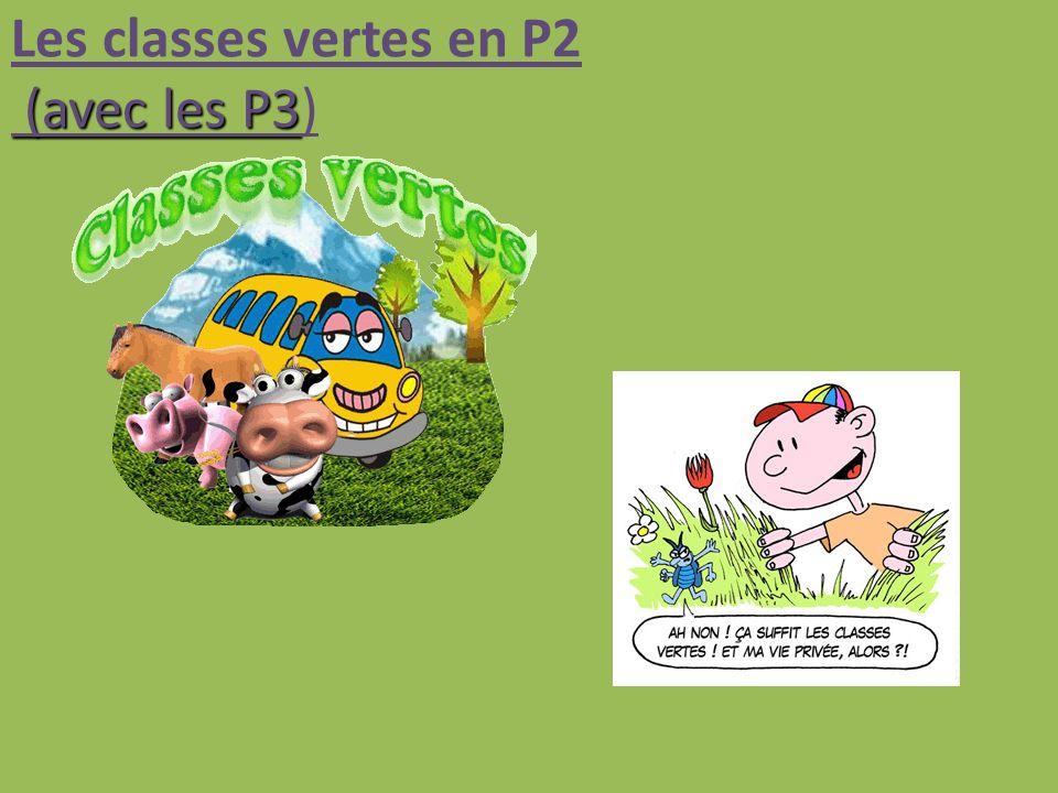 (avec les P3 Les classes vertes en P2 (avec les P3)