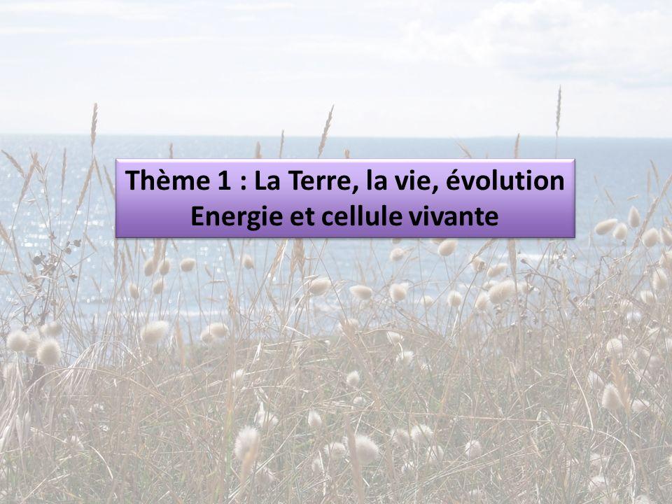 Thème 1 : La Terre, la vie, évolution Energie et cellule vivante Thème 1 : La Terre, la vie, évolution Energie et cellule vivante