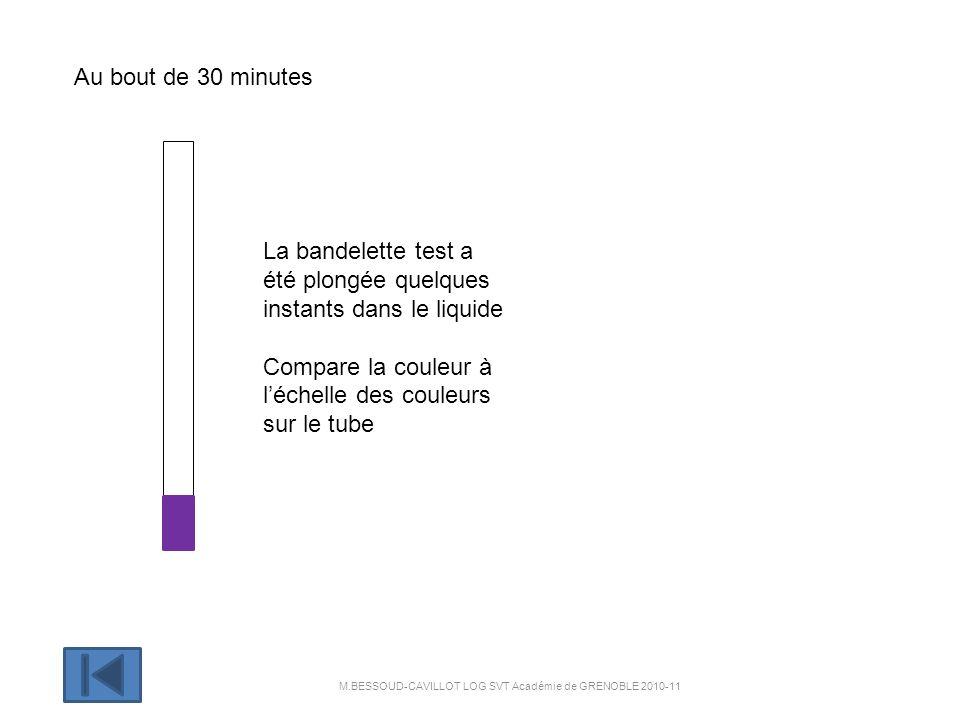 Au bout de 30 minutes La bandelette test a été plongée quelques instants dans le liquide Compare la couleur à léchelle des couleurs sur le tube M.BESSOUD-CAVILLOT LOG SVT Académie de GRENOBLE 2010-11