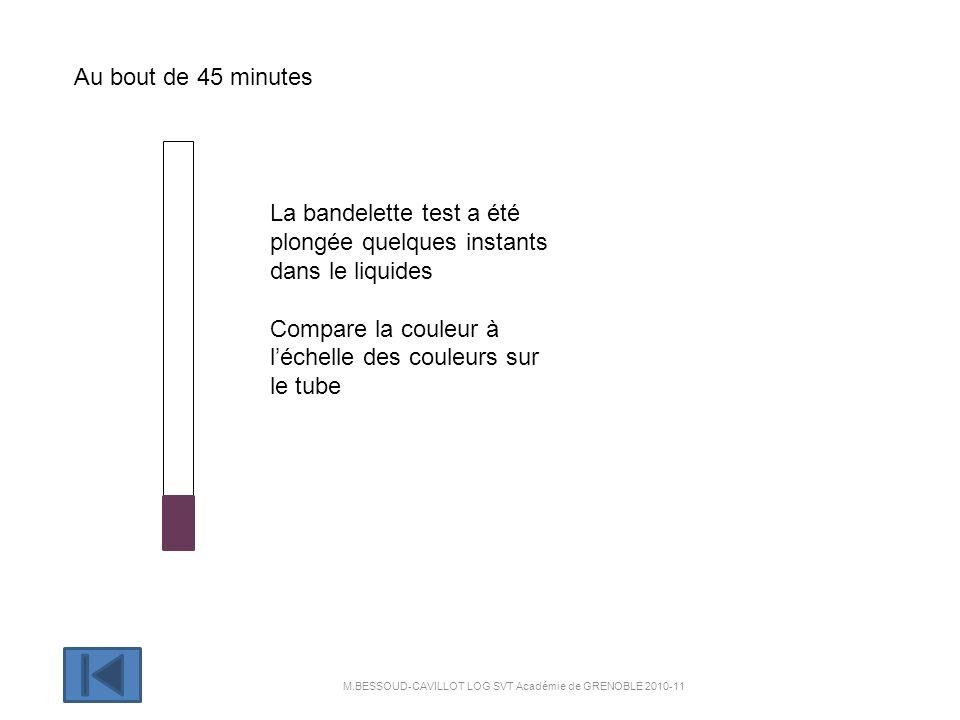 Au bout de 60 minutes La bandelette test a été plongée quelques instants dans le liquide Compare la couleur à léchelle des couleurs sur le tube M.BESSOUD-CAVILLOT LOG SVT Académie de GRENOBLE 2010- 11