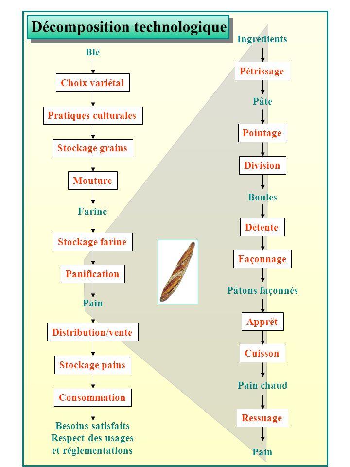Décomposition technologique Pratiques culturales Choix variétal Stockage grains Mouture Stockage farine Panification Stockage pains Distribution/vente