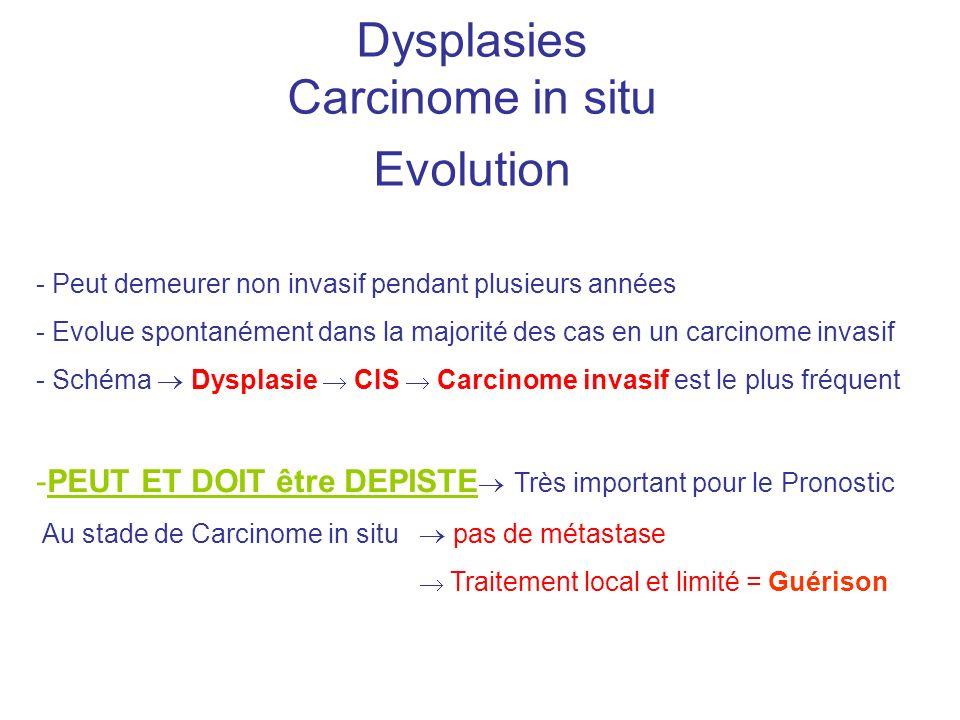 Dysplasies Carcinome in situ Evolution - Peut demeurer non invasif pendant plusieurs années - Evolue spontanément dans la majorité des cas en un carci
