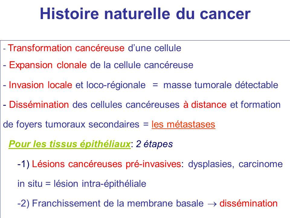 Colonisation des glandes par un carcinome in situ