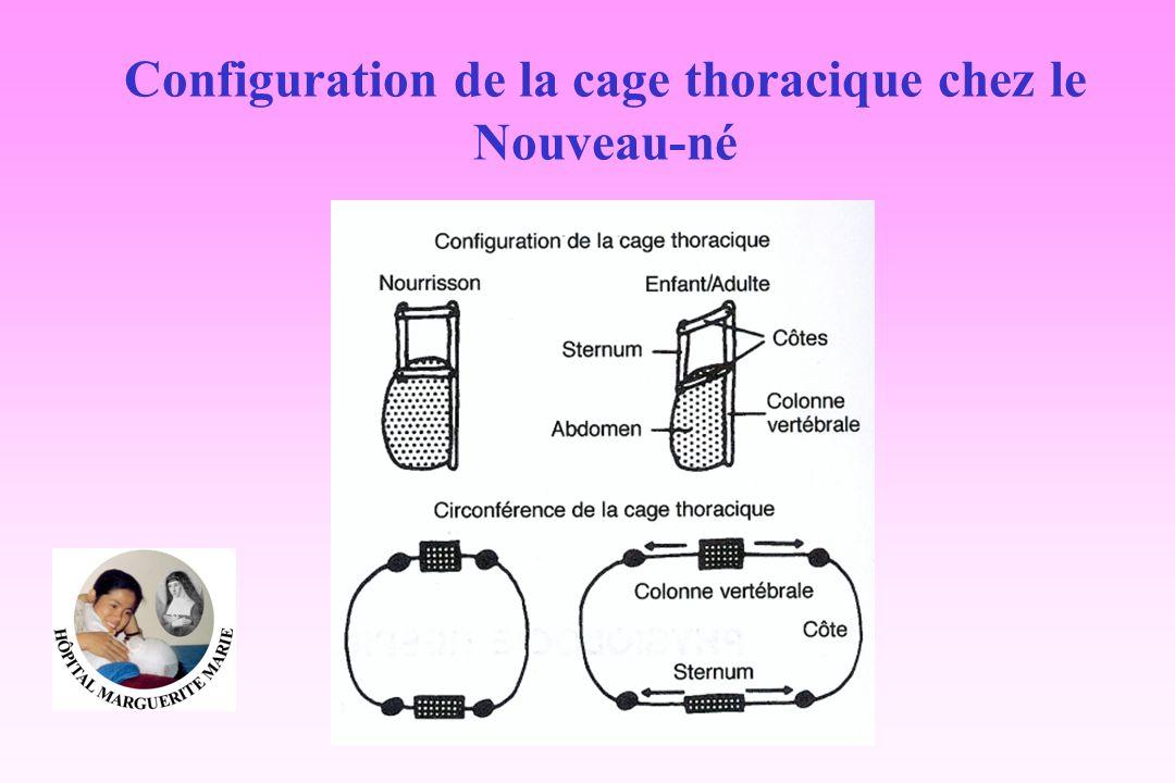 Configuration de la cage thoracique chez le Nouveau-né