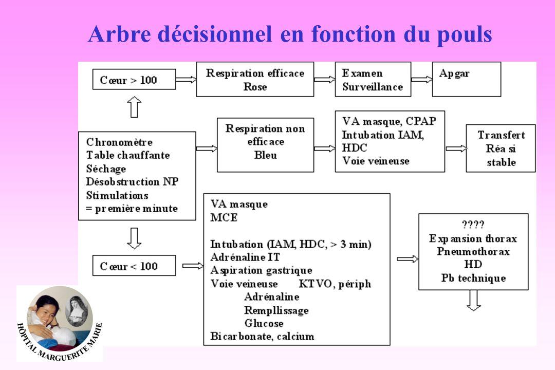 Arbre décisionnel en fonction du pouls