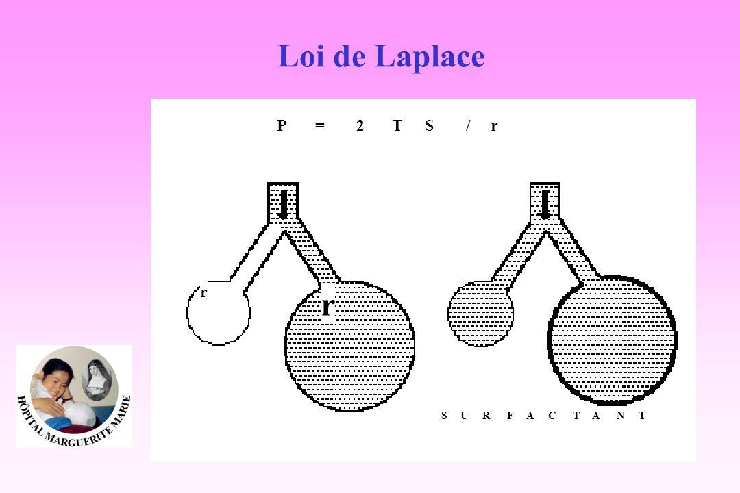 P = 2 TS / r r r SURFACTANT Loi de Laplace