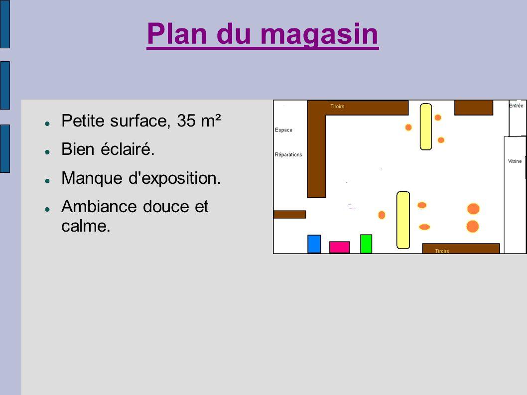 Plan du magasin Petite surface, 35 m² Bien éclairé. Manque d'exposition. Ambiance douce et calme.