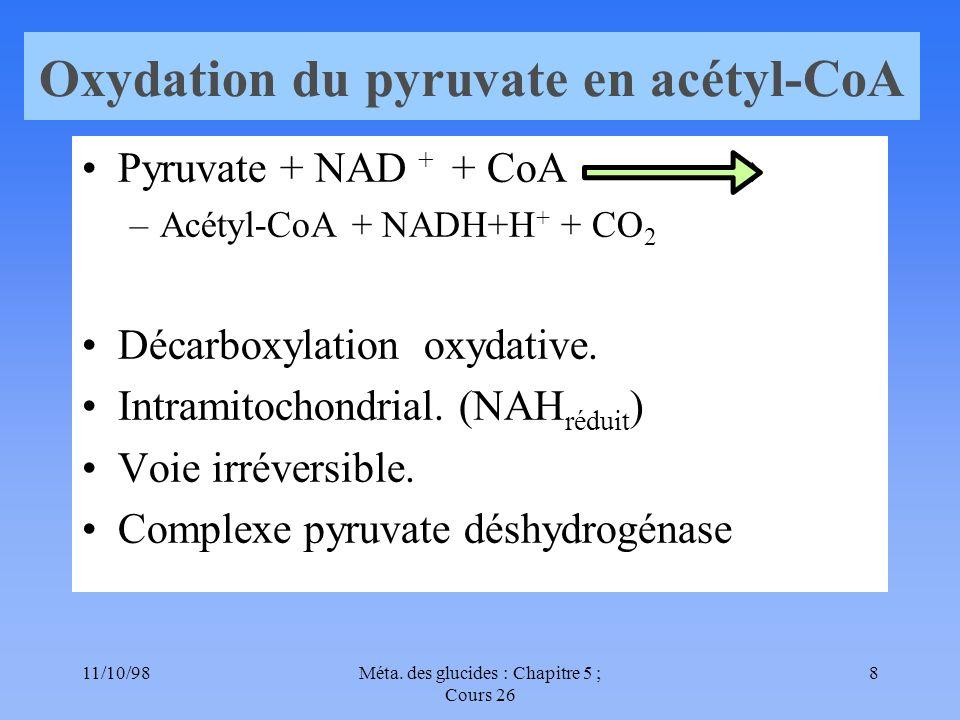 11/10/989Méta. des glucides : Chapitre 5 ; Cours 26 Produits terminaux Vitamines du B-complexe