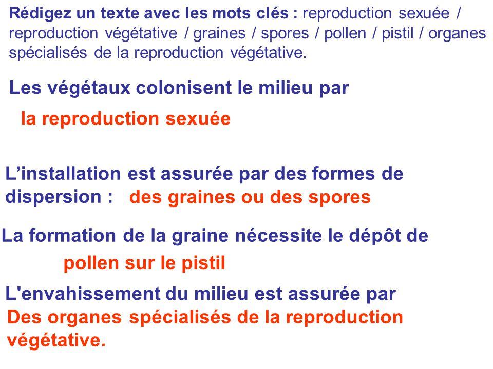 Rédigez un texte avec les mots clés : reproduction sexuée / reproduction végétative / graines / spores / pollen / pistil / organes spécialisés de la r