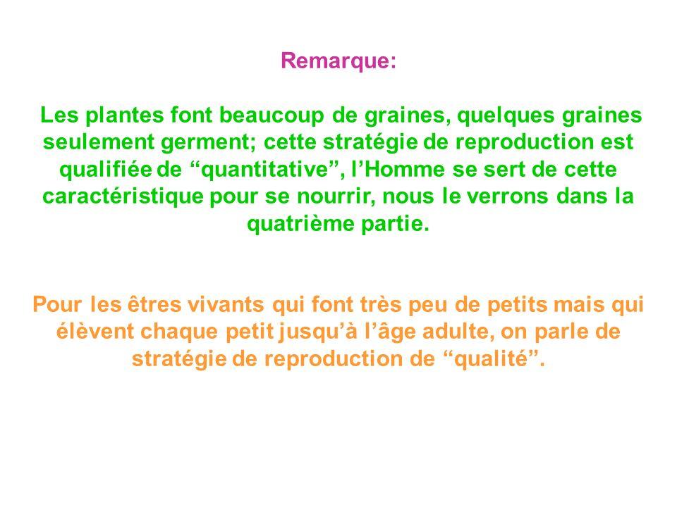 Remarque: Les plantes font beaucoup de graines, quelques graines seulement germent; cette stratégie de reproduction est qualifiée de quantitative, lHo