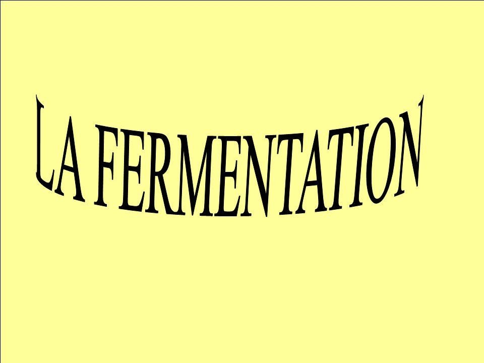La fermentation correspond à une dégradation partielle du substrat (glucose) en absence de dioxygène.