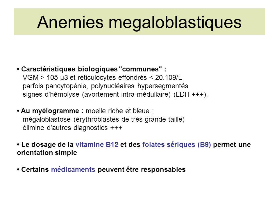 Anemies megaloblastiques Caractéristiques biologiques communes : VGM > 105 µ3 et réticulocytes effondrés < 20.109/L parfois pancytopénie, polynucléaires hypersegmentés signes dhémolyse (avortement intra-médullaire) (LDH +++), Au myélogramme : moelle riche et bleue ; mégaloblastose (érythroblastes de très grande taille) élimine dautres diagnostics +++ Le dosage de la vitamine B12 et des folates sériques (B9) permet une orientation simple Certains médicaments peuvent être responsables