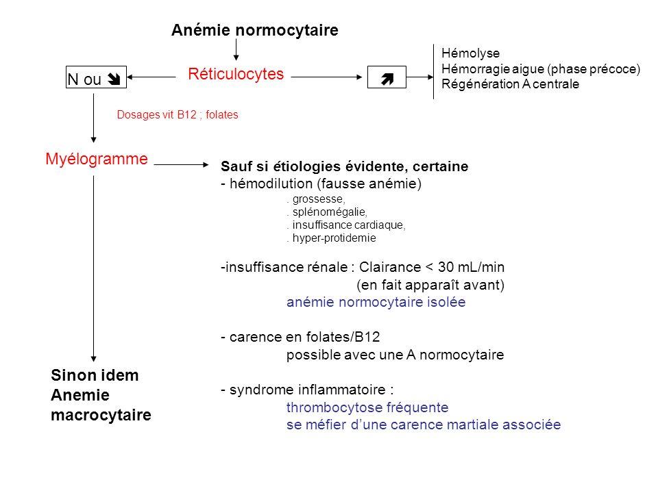 Anémie normocytaire Réticulocytes N ou Hémolyse Hémorragie aigue (phase précoce) Régénération A centrale Myélogramme Sauf si étiologies évidente, certaine - hémodilution (fausse anémie).