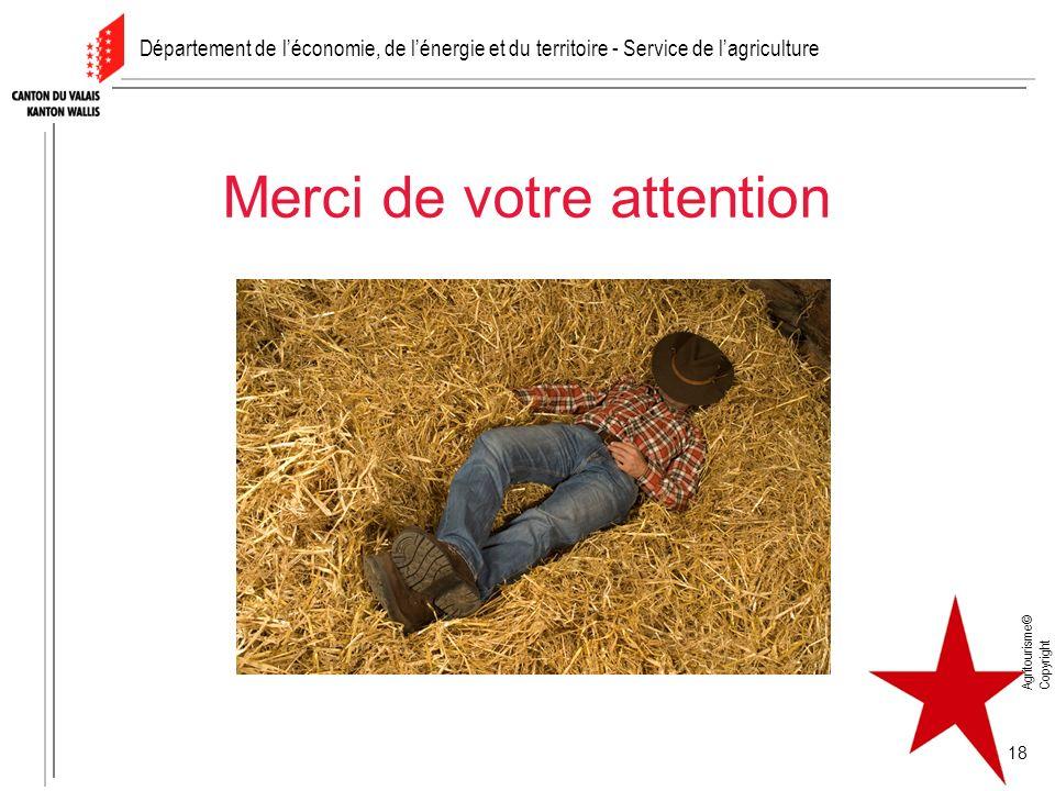 Agritourisme© Copyright 18 Merci de votre attention Département de léconomie, de lénergie et du territoire - Service de lagriculture