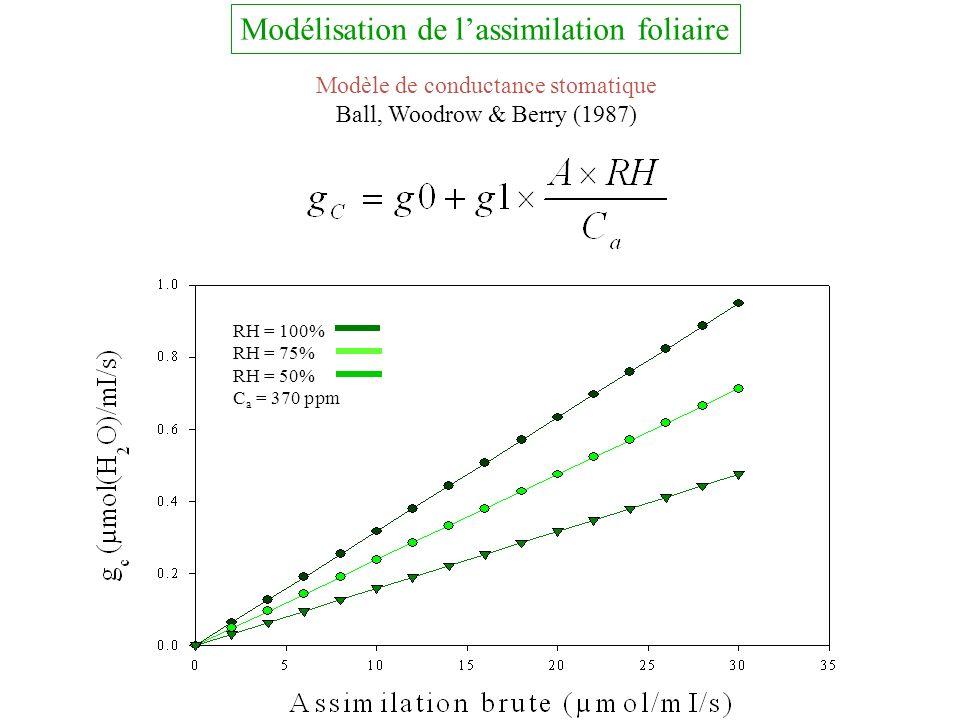 Modèle de conductance stomatique Ball, Woodrow & Berry (1987) RH = 100% RH = 75% RH = 50% C a = 370 ppm Modélisation de lassimilation foliaire