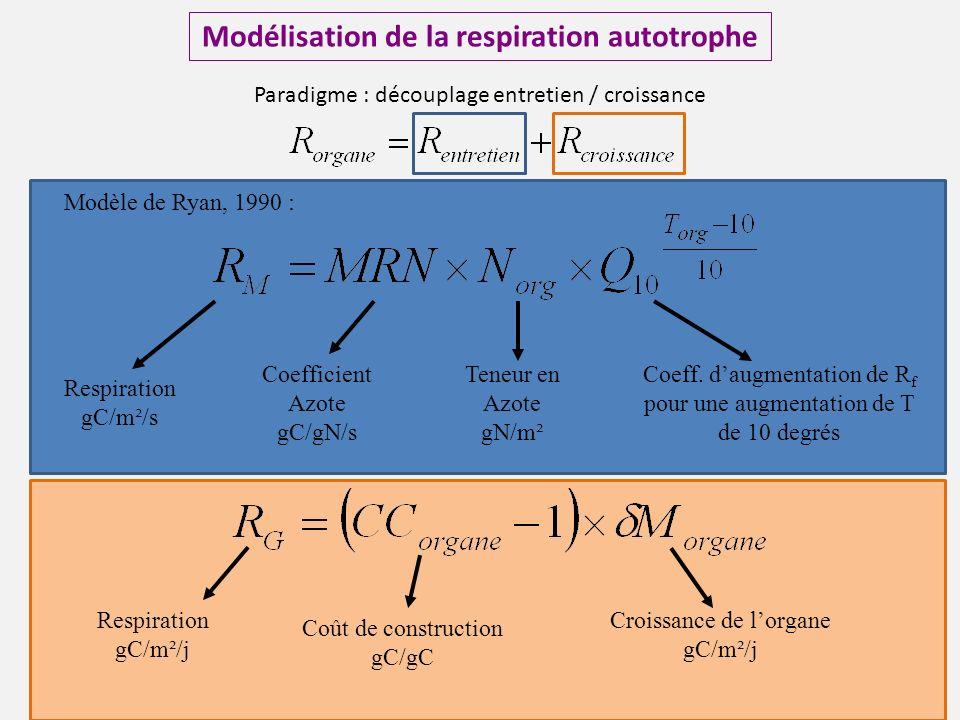 Modélisation de la respiration autotrophe Modèle de Ryan, 1990 : Respiration gC/m²/s Coefficient Azote gC/gN/s Teneur en Azote gN/m² Coeff.