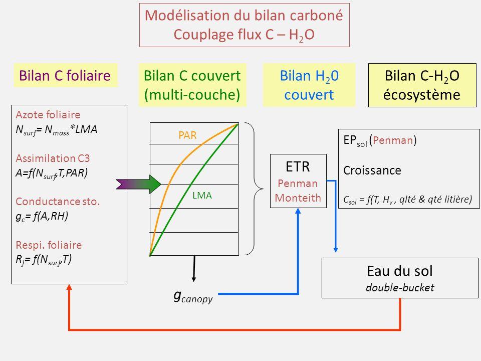 Modélisation du bilan carboné Couplage flux C – H 2 O Azote foliaire N surf = N mass *LMA Assimilation C3 A=f(N surf,T,PAR) Conductance sto.