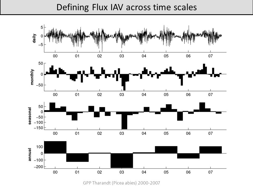 Defining Flux IAV across time scales GPP Tharandt (Picea abies) 2000-2007