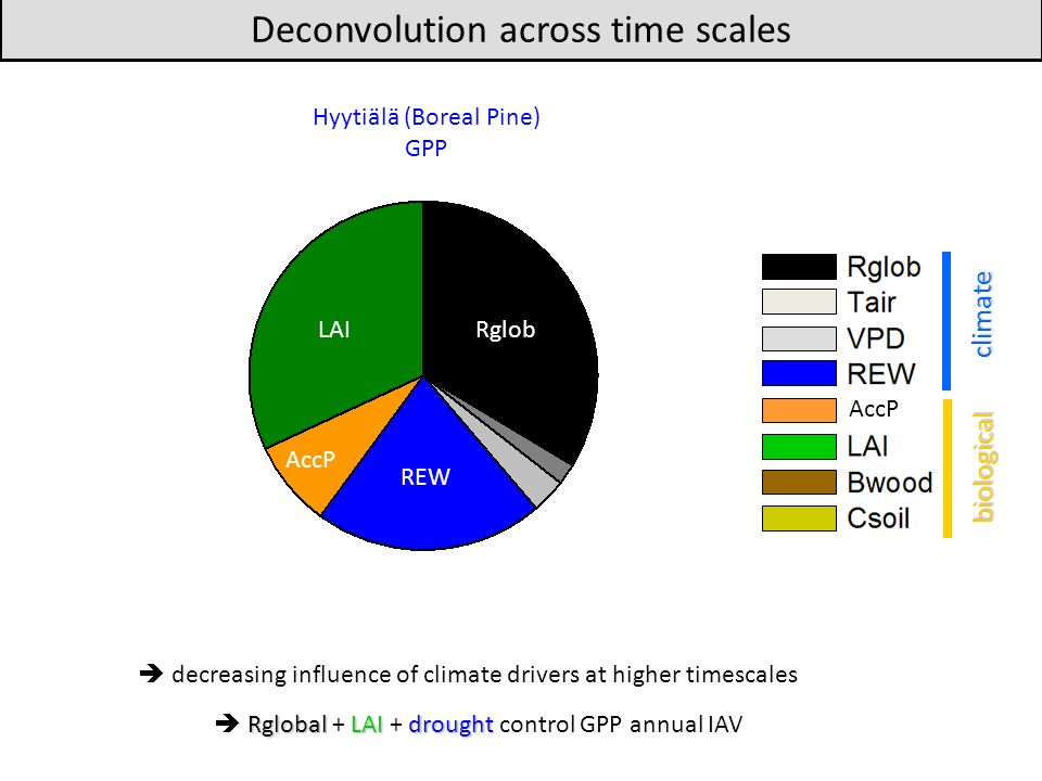 decreasing influence of climate drivers at higher timescales Deconvolution across time scales Hyytiälä (Boreal Pine) GPP climate biological AccP Rglob