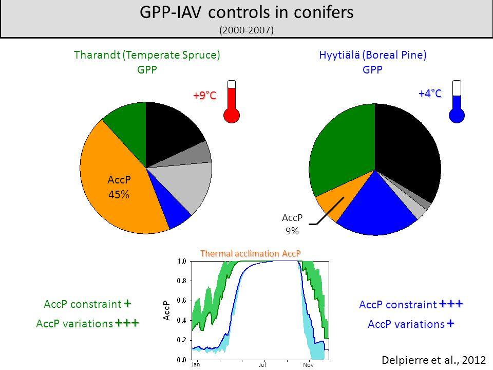 Thermal acclimation AccP Jan JulNov +++ AccP constraint +++ + AccP variations + + AccP constraint + +++ AccP variations +++ Hyytiälä (Boreal Pine) GPP Tharandt (Temperate Spruce) GPP GPP-IAV controls in conifers (2000-2007) +9°C +4°C AccP 45% AccP 9% Delpierre et al., 2012