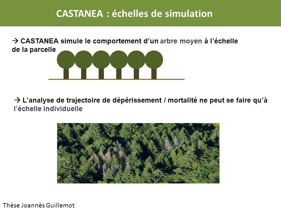 CASTANEA : échelles de simulation CASTANEA simule le comportement dun arbre moyen à léchelle de la parcelle Lanalyse de trajectoire de dépérissement / mortalité ne peut se faire quà léchelle individuelle Thèse Joannès Guillemot
