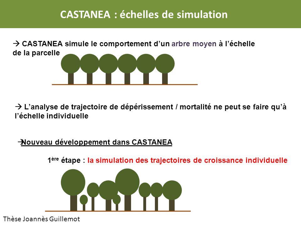 CASTANEA simule le comportement dun arbre moyen à léchelle de la parcelle Lanalyse de trajectoire de dépérissement / mortalité ne peut se faire quà léchelle individuelle Nouveau développement dans CASTANEA 1 ère étape : la simulation des trajectoires de croissance individuelle CASTANEA : échelles de simulation Thèse Joannès Guillemot