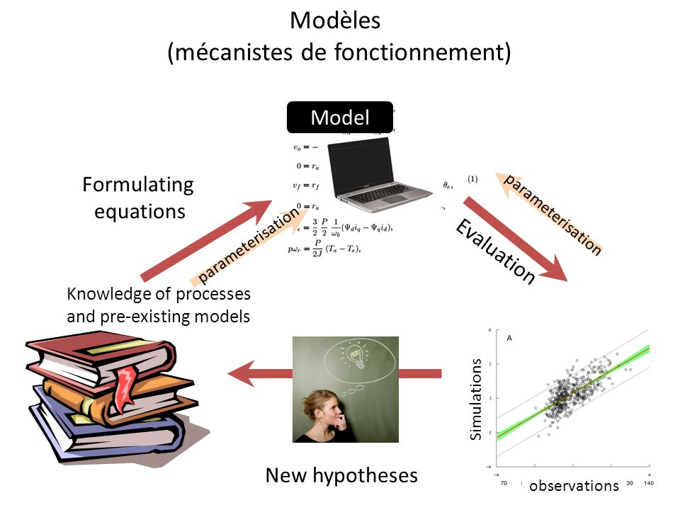Knowledge of processes and pre-existing models New hypotheses Formulating equations Evaluation parameterisation data Simulations observations Model Mo