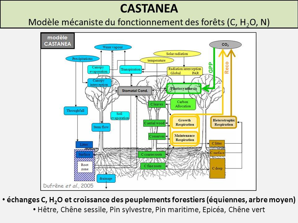 Photosynthèse limitée par carboxylation Modélisation de lassimilation foliaire Modèle de Farquhar (2)