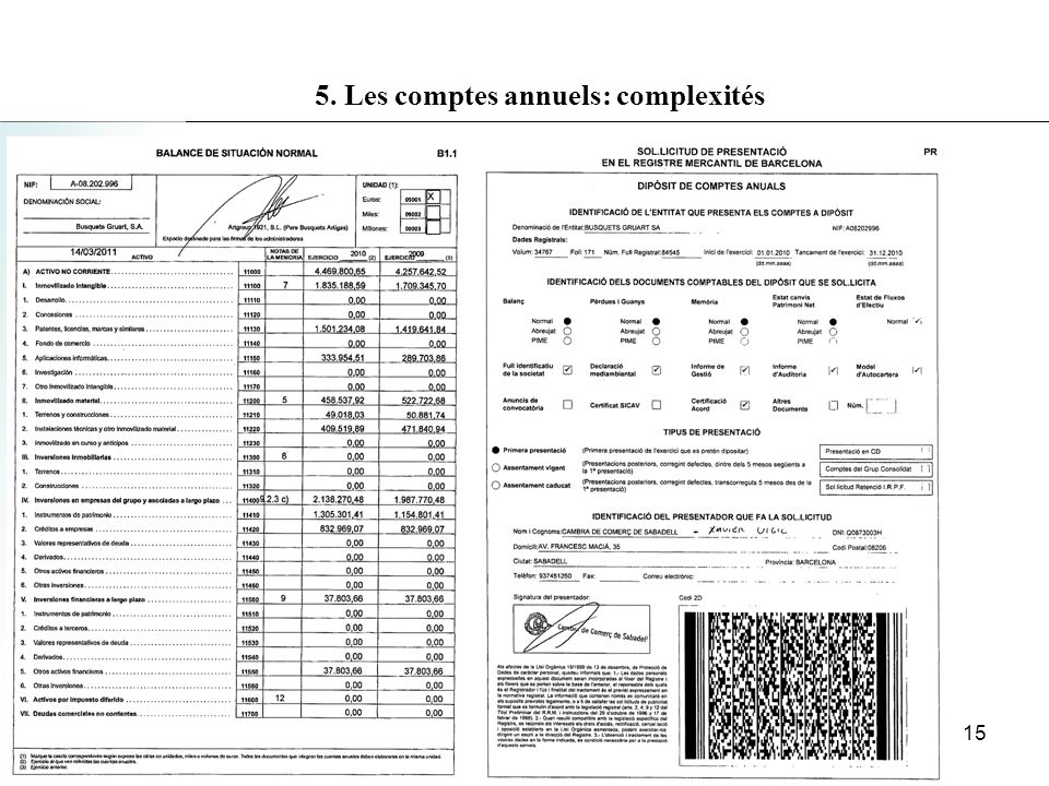 5. Les comptes annuels: complexités 15