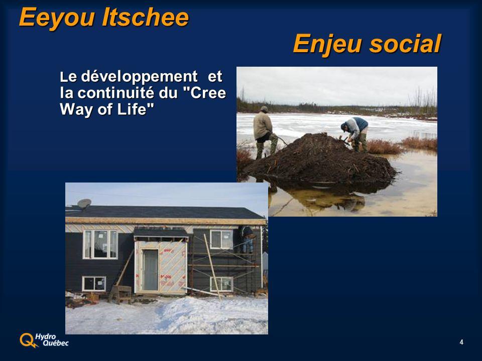 4 Eeyou Itschee Enjeu social L e développement et la continuité du Cree Way of Life L e développement et la continuité du Cree Way of Life