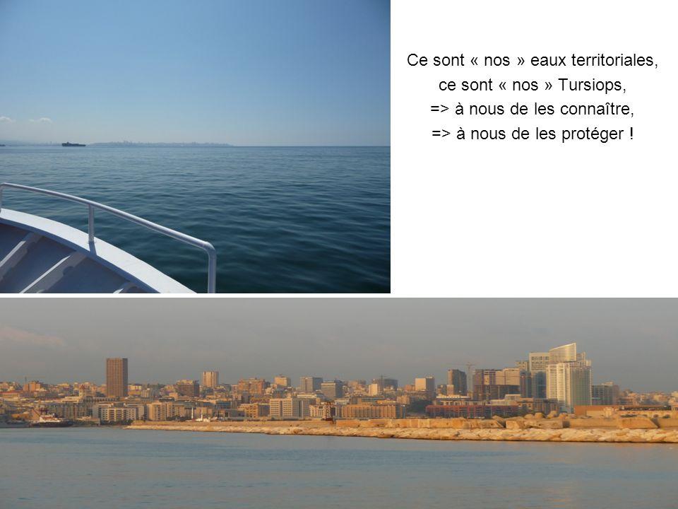 Ce sont « nos » eaux territoriales, ce sont « nos » Tursiops, => à nous de les connaître, => à nous de les protéger !