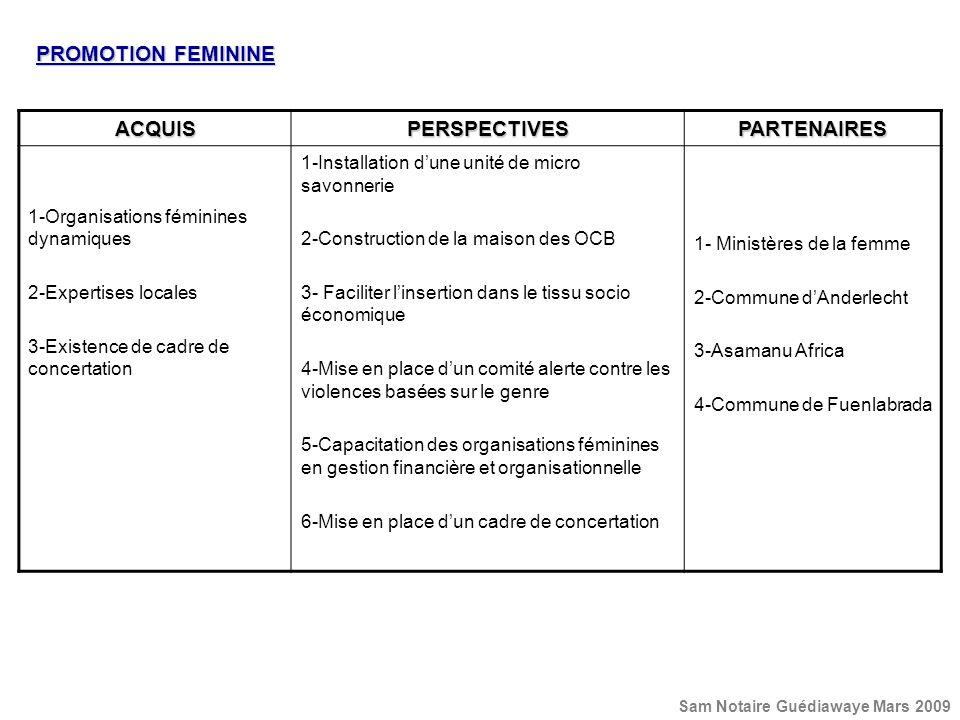 PROMOTION FEMININE ACQUISPERSPECTIVESPARTENAIRES 1-Organisations féminines dynamiques 2-Expertises locales 3-Existence de cadre de concertation 1-Inst