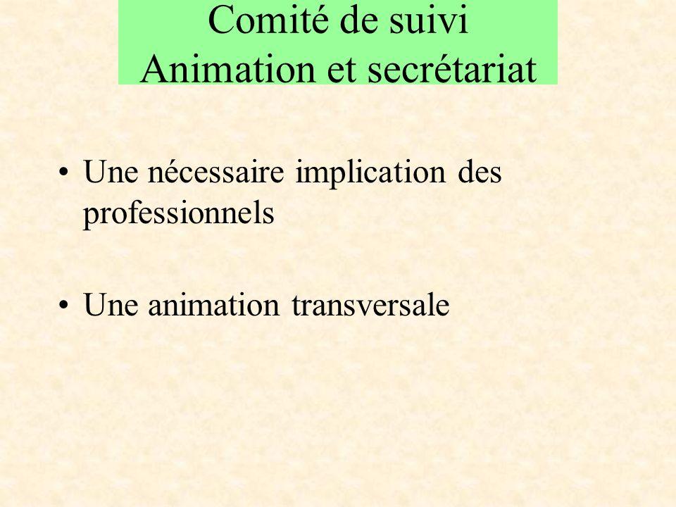 Comité de suivi Animation et secrétariat Une nécessaire implication des professionnels Une animation transversale