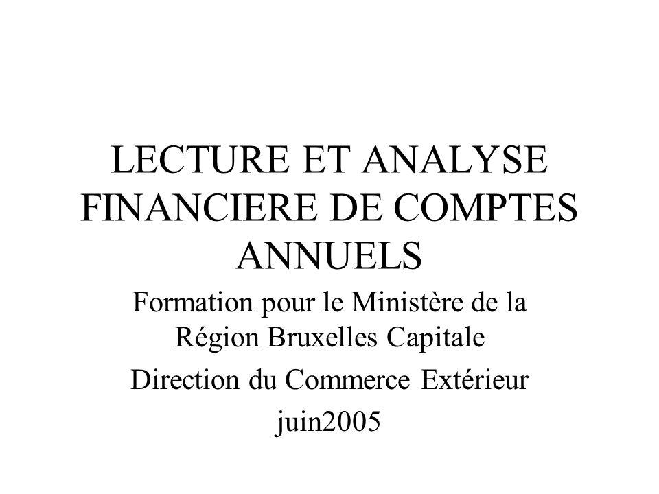 LECTURE ET ANALYSE FINANCIERE DE COMPTES ANNUELS Formation pour le Ministère de la Région Bruxelles Capitale Direction du Commerce Extérieur juin2005