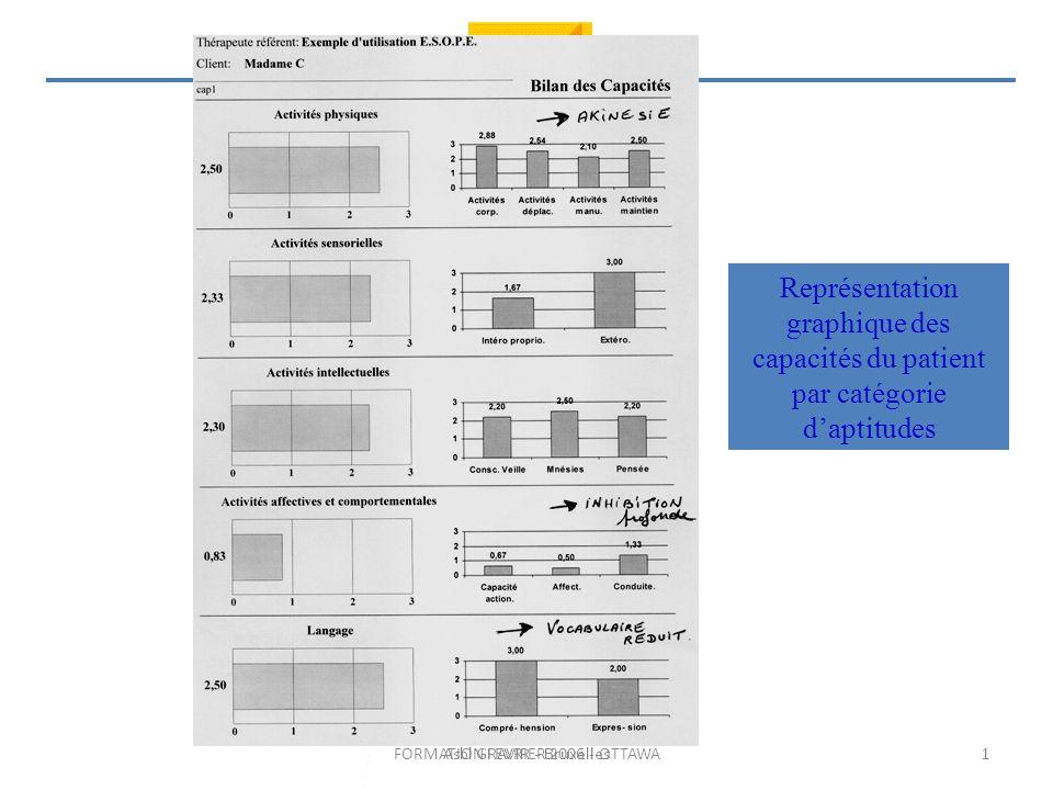 FORMATION FEVRIER 2006 - OTTAWA Représentation graphique des capacités du patient par catégorie daptitudes