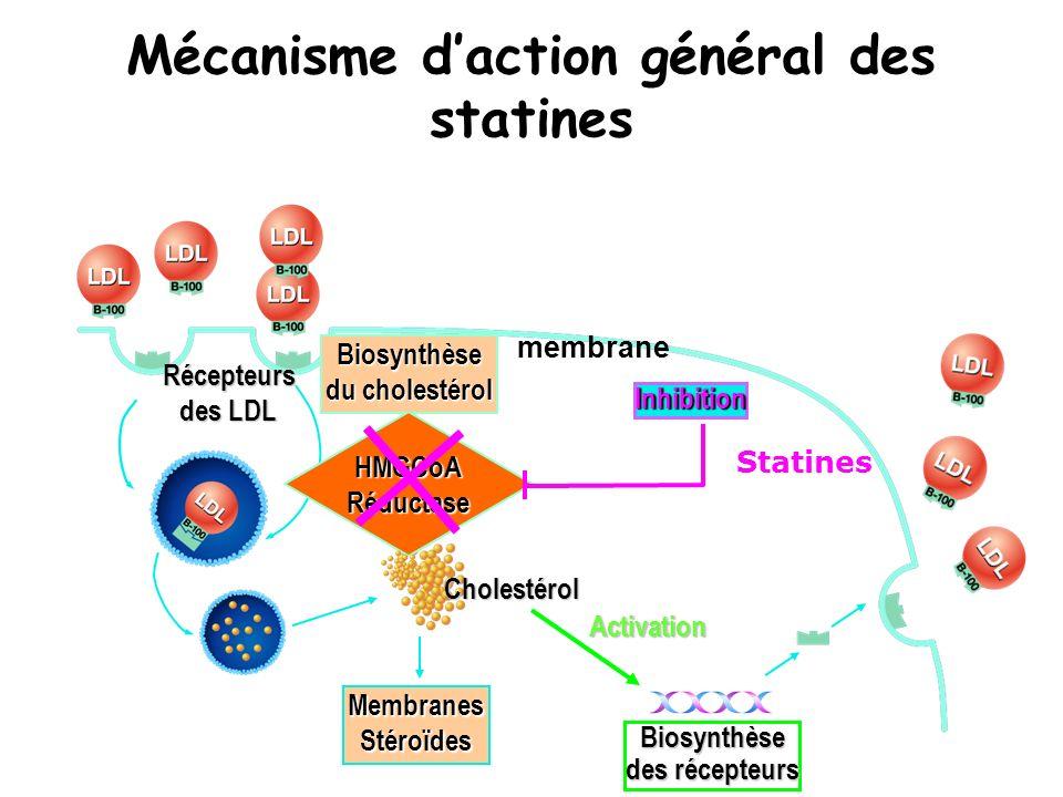 Mécanisme daction général des statines Récepteurs des LDL Biosynthèse du cholestérol HMGCoA Réductase membrane Cholestérol Membranes Stéroïdes Inhibit