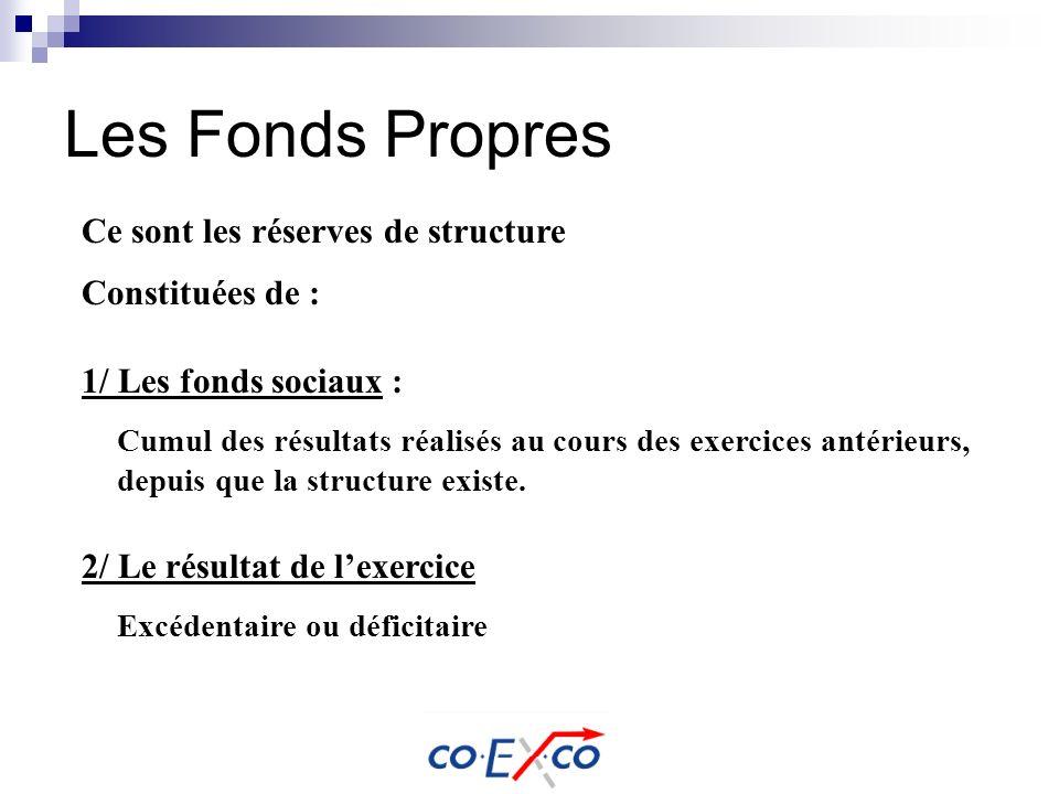 Les Fonds Propres Cumul des résultats réalisés au cours des exercices antérieurs, depuis que la structure existe. Ce sont les réserves de structure Co
