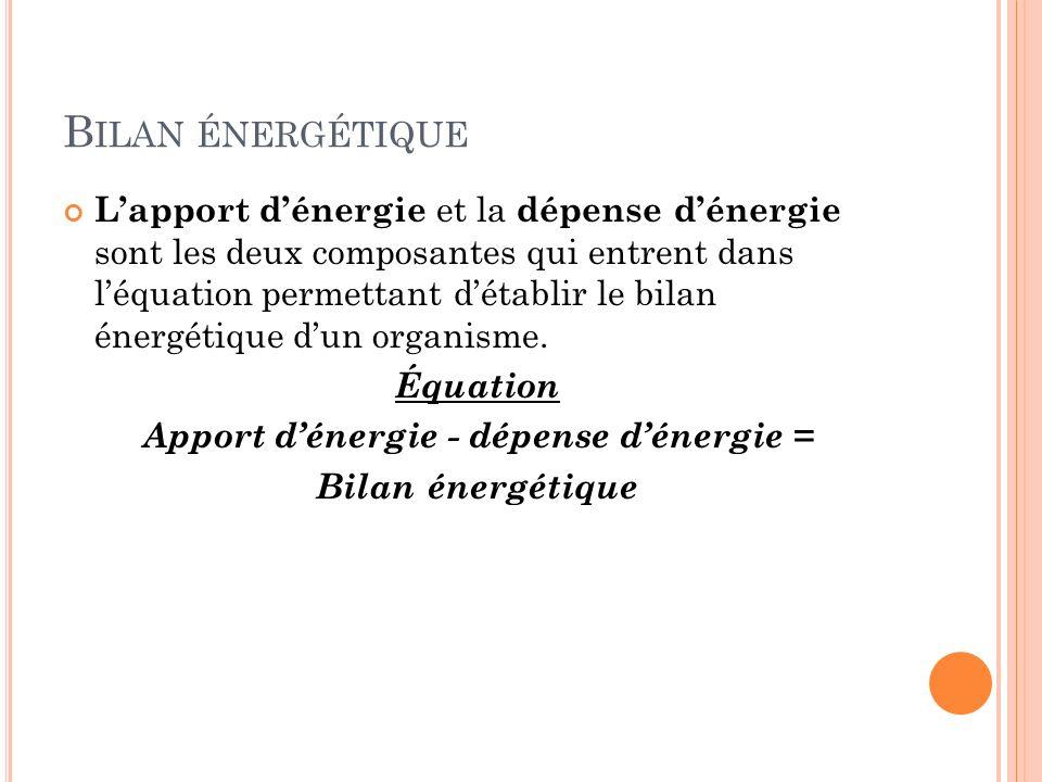 B ILAN ÉNERGÉTIQUE Lapport dénergie et la dépense dénergie sont les deux composantes qui entrent dans léquation permettant détablir le bilan énergétiq