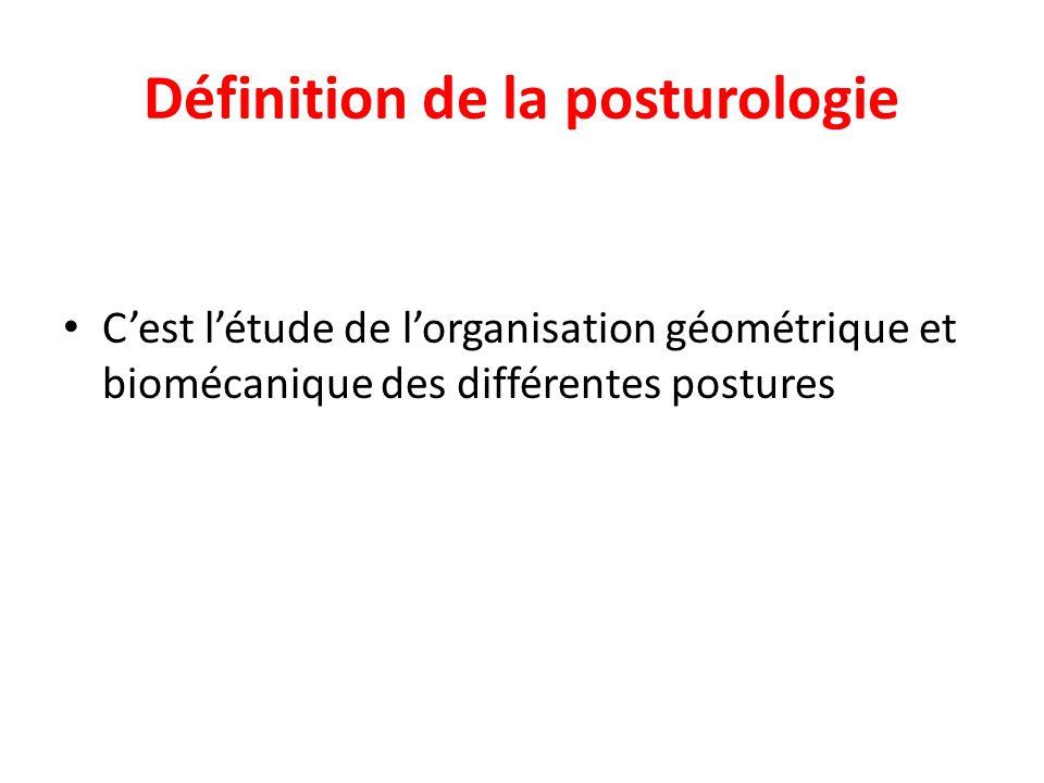 Définition de la posturologie Cest létude de lorganisation géométrique et biomécanique des différentes postures