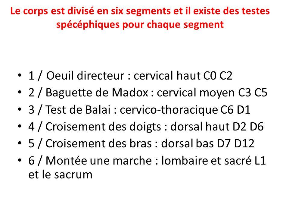 Le corps est divisé en six segments et il existe des testes spécéphiques pour chaque segment 1 / Oeuil directeur : cervical haut C0 C2 2 / Baguette de