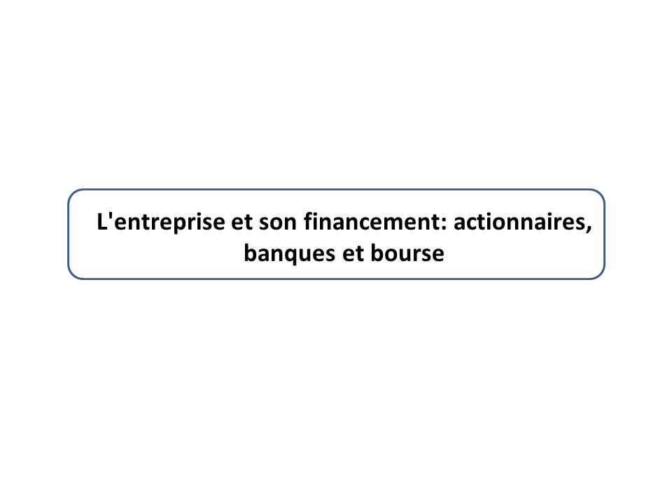L'entreprise et son financement: actionnaires, banques et bourse