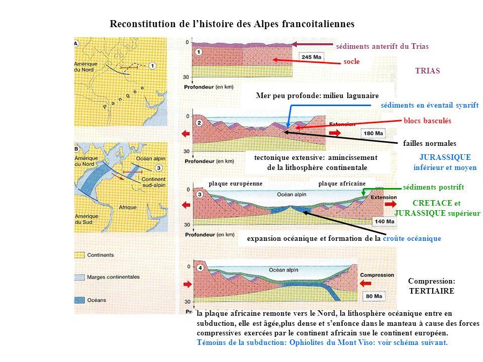 Reconstitution de lhistoire des Alpes francoitaliennes Mer peu profonde: milieu lagunaire sédiments anterift du Trias socle tectonique extensive: amin