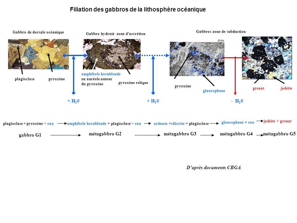 Filiation des gabbros de la lithosphère océanique Gabbro de dorsale océanique pyroxène plagioclase Gabbro hydraté zone daccrétion pyroxène relique amphibole hornblende en auréole autour du pyroxène Gabbros zone de subduction glaucophane pyroxène grenatjadéite + H 2 0 - H 2 0 plagioclase + pyroxène + eau amphibole hornblende + plagioclase + eau actinote +chlorite + plagioclase glaucophane + eau jadéite + grenat gabbro G1 métagabbro G2métagabbro G3métagabbro G4métagabbro G5 Daprès documents CBGA