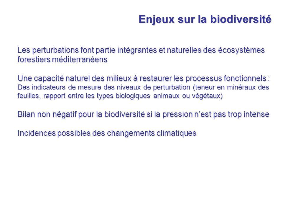 Enjeux sur la biodiversité Les perturbations font partie intégrantes et naturelles des écosystèmes forestiers méditerranéens Une capacité naturel des
