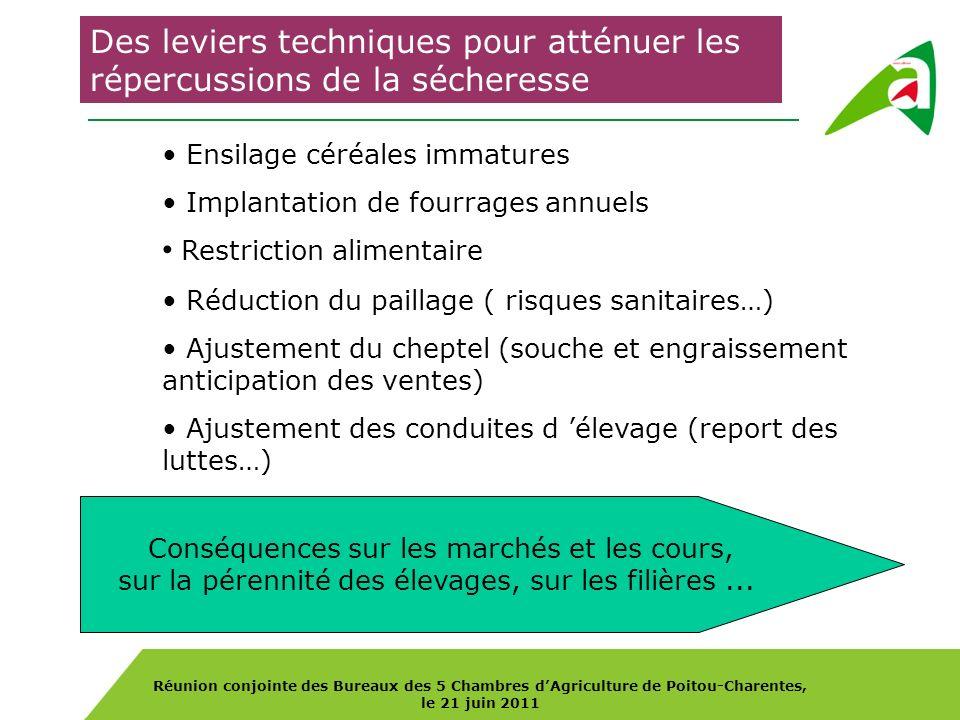 Réunion conjointe des Bureaux des 5 Chambres dAgriculture de Poitou-Charentes, le 21 juin 2011 Des leviers techniques pour atténuer les répercussions