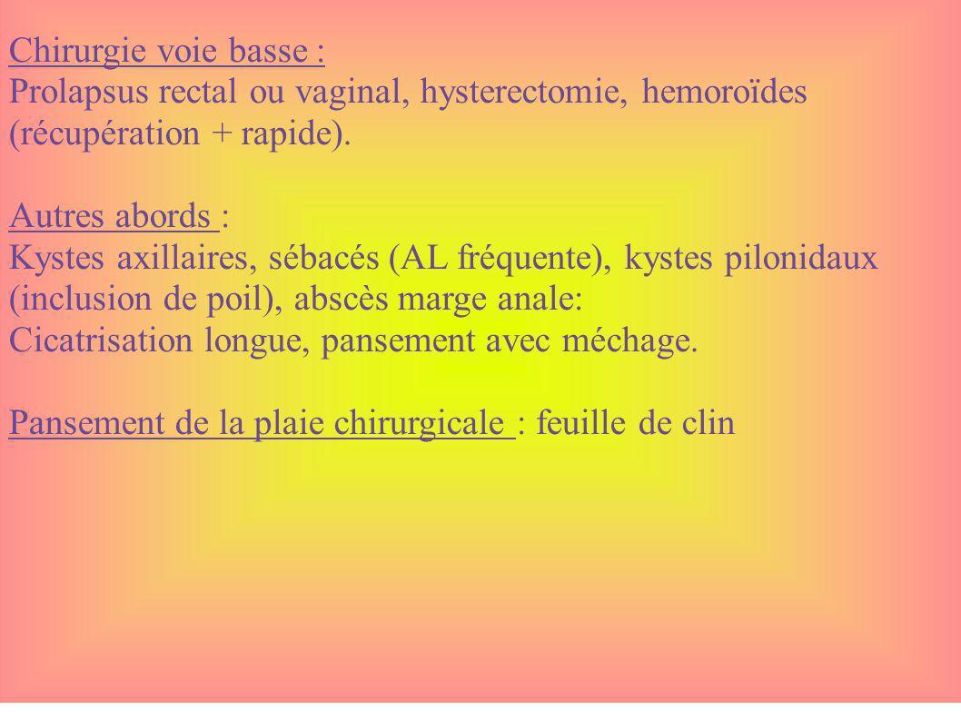 Chirurgie voie basse : Prolapsus rectal ou vaginal, hysterectomie, hemoroïdes (récupération + rapide). Autres abords : Kystes axillaires, sébacés (AL