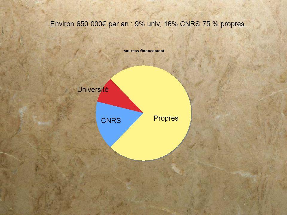 Propres CNRS Université Environ 650 000 par an : 9% univ, 16% CNRS 75 % propres