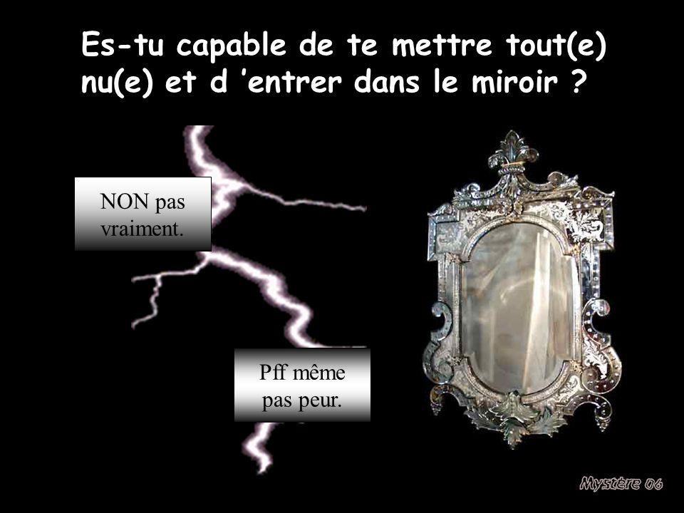 Es-tu capable de te mettre tout(e) nu(e) et d entrer dans le miroir .